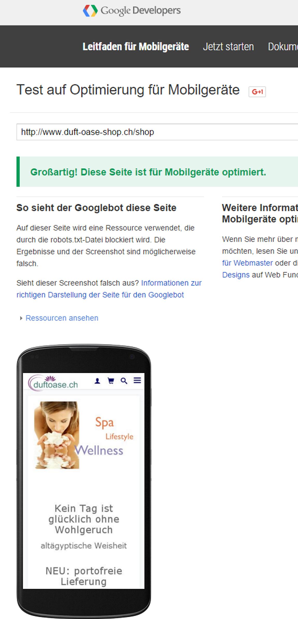 Resultat der Google Überprüfung bezüglich mobile Website